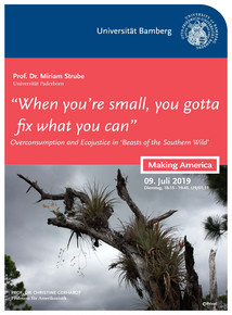 "Poster for guest lecture: ""'When you're small, you gotta fix what you can': Overconsumption and Ecojustice in Beasts of the Southern Wild"" by Prof. Dr. Miriam Strube. Tuesday, 09.07.2019, 6:15-7:45 p.m., U9/01.11"